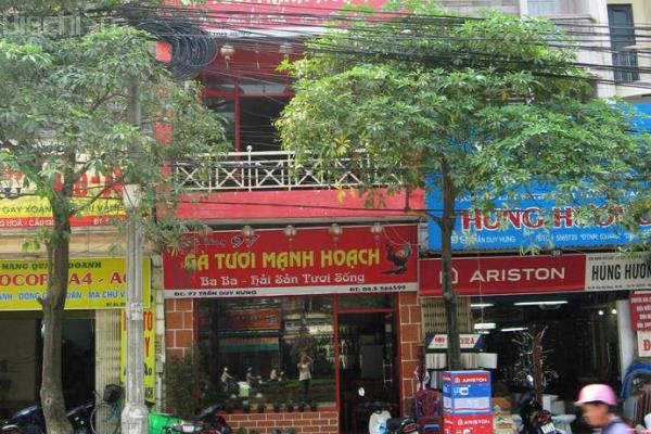 Gà Mạnh Hoạch Trần Huy Hưng
